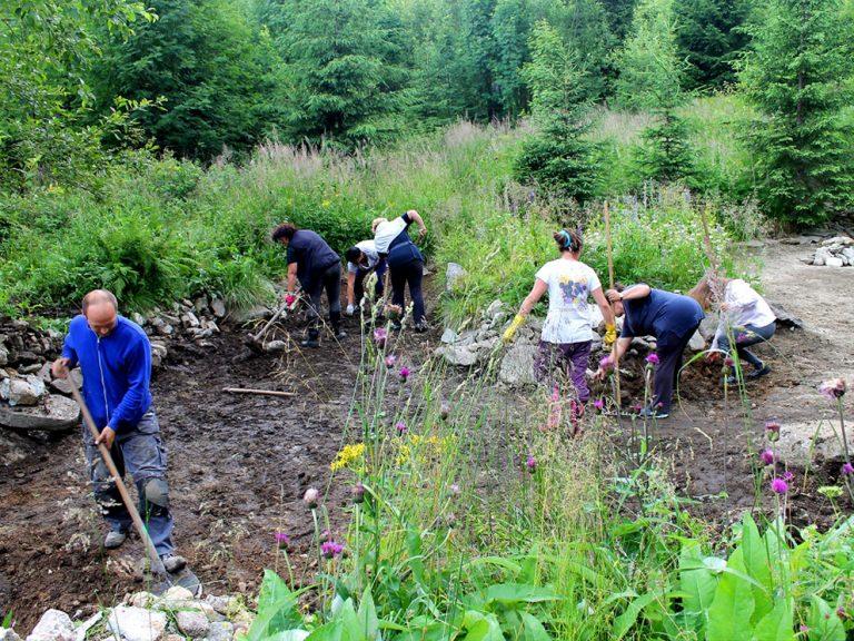 jazierko hagy vysoke tatry priroda les